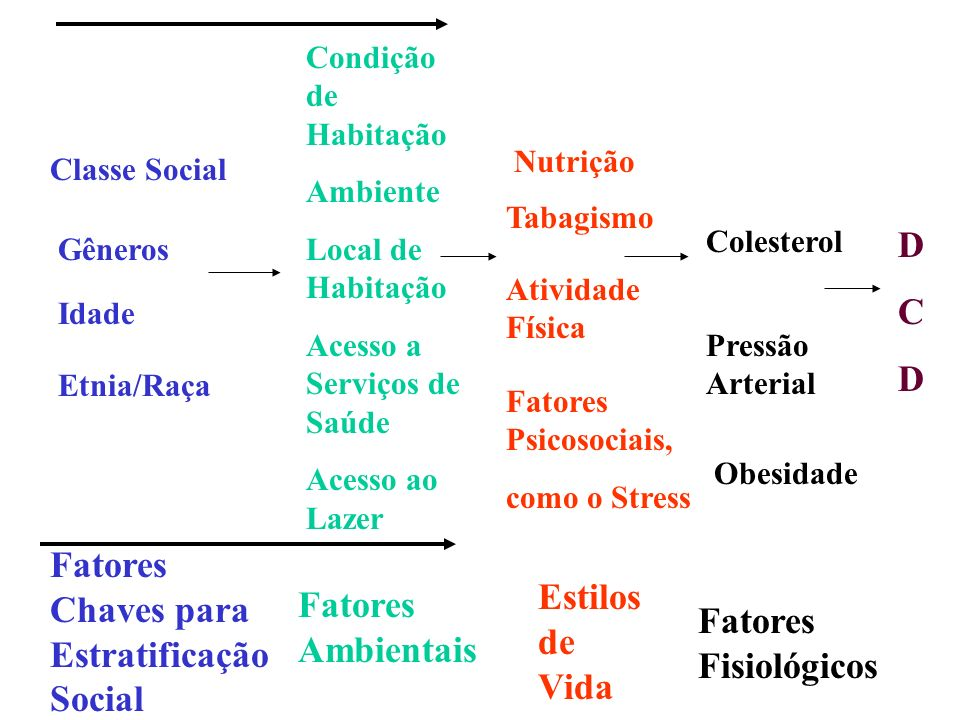 Fatores Chaves para Estratificação Social Estilos de Vida