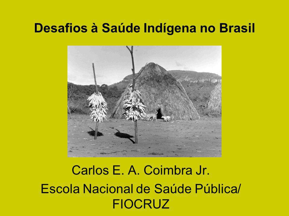 Desafios à Saúde Indígena no Brasil