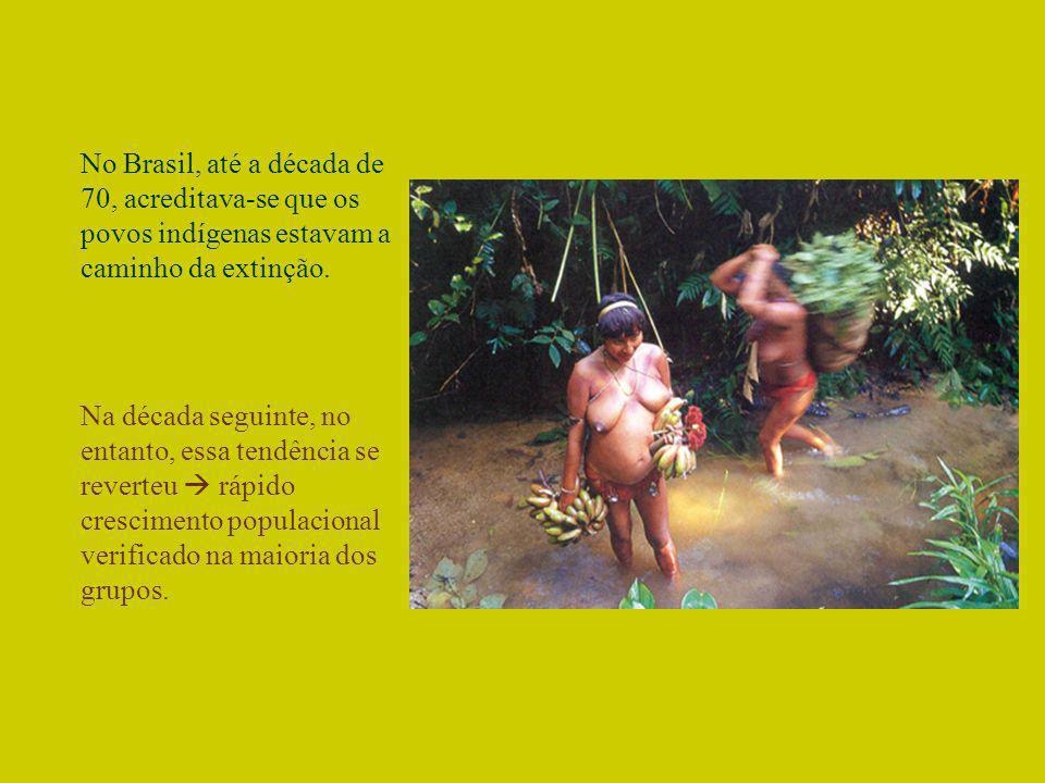 No Brasil, até a década de 70, acreditava-se que os povos indígenas estavam a caminho da extinção.