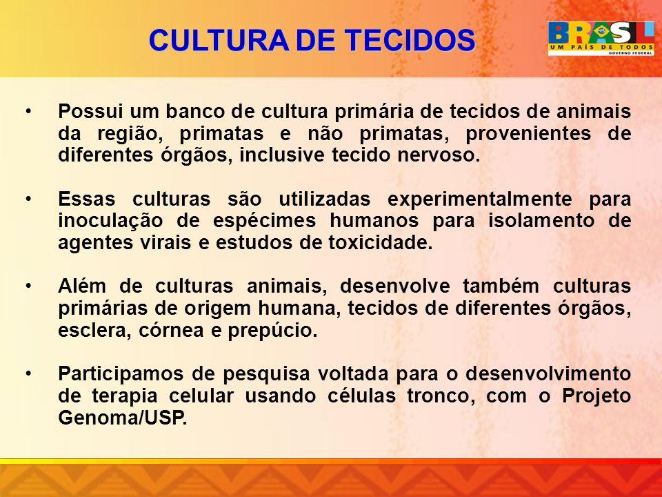 CULTURA DE TECIDOS
