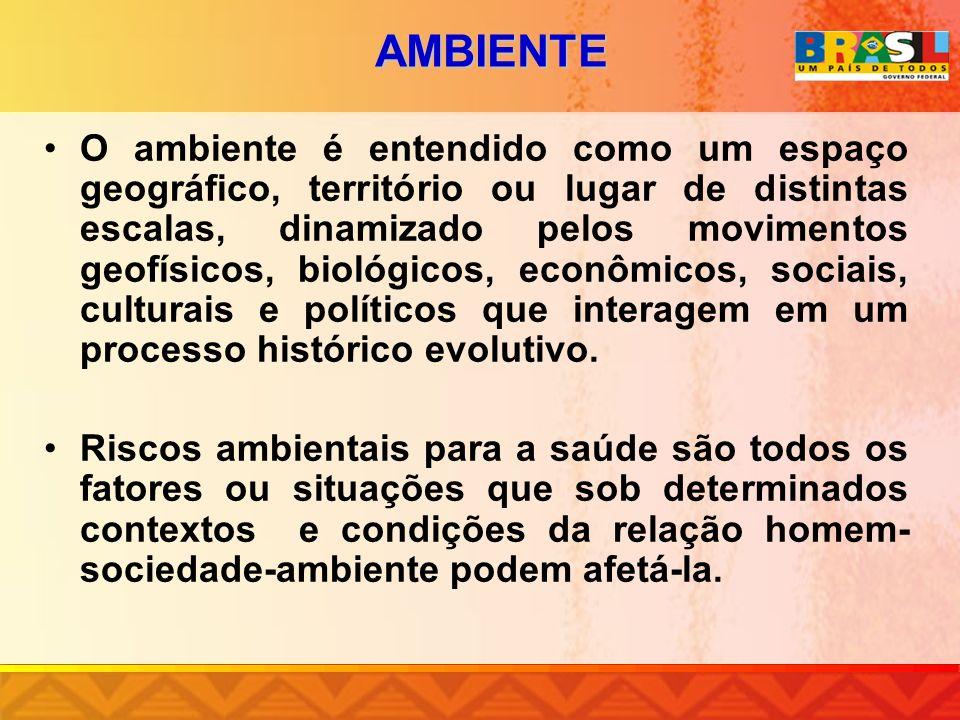 AMBIENTE