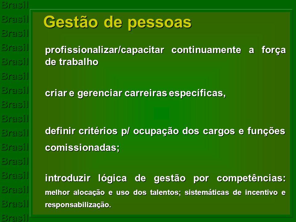 Gestão de pessoas profissionalizar/capacitar continuamente a força de trabalho. criar e gerenciar carreiras específicas,