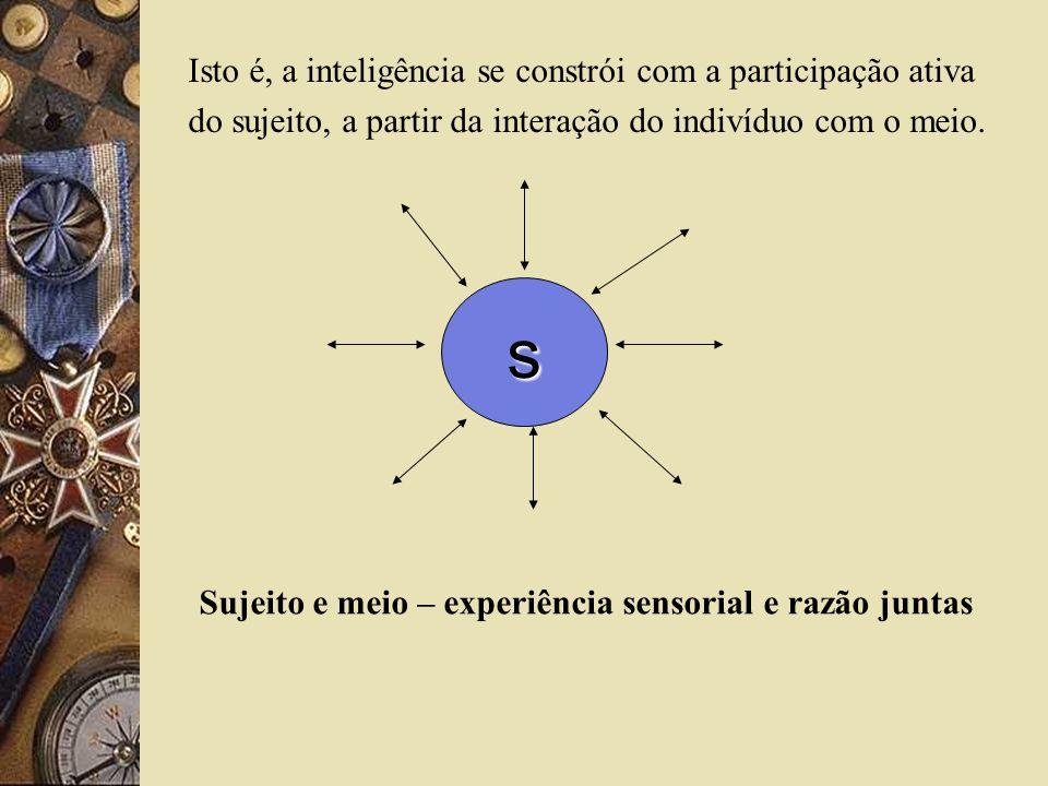 Sujeito e meio – experiência sensorial e razão juntas
