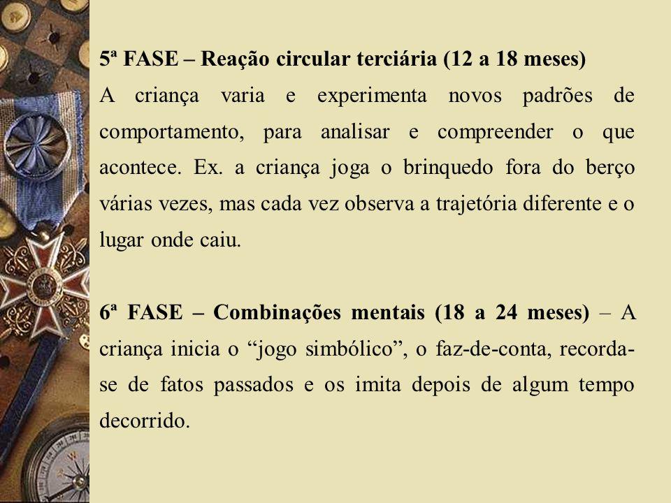 5ª FASE – Reação circular terciária (12 a 18 meses)
