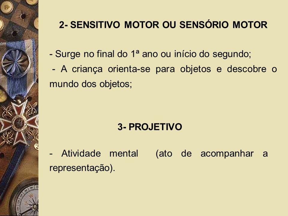 2- SENSITIVO MOTOR OU SENSÓRIO MOTOR
