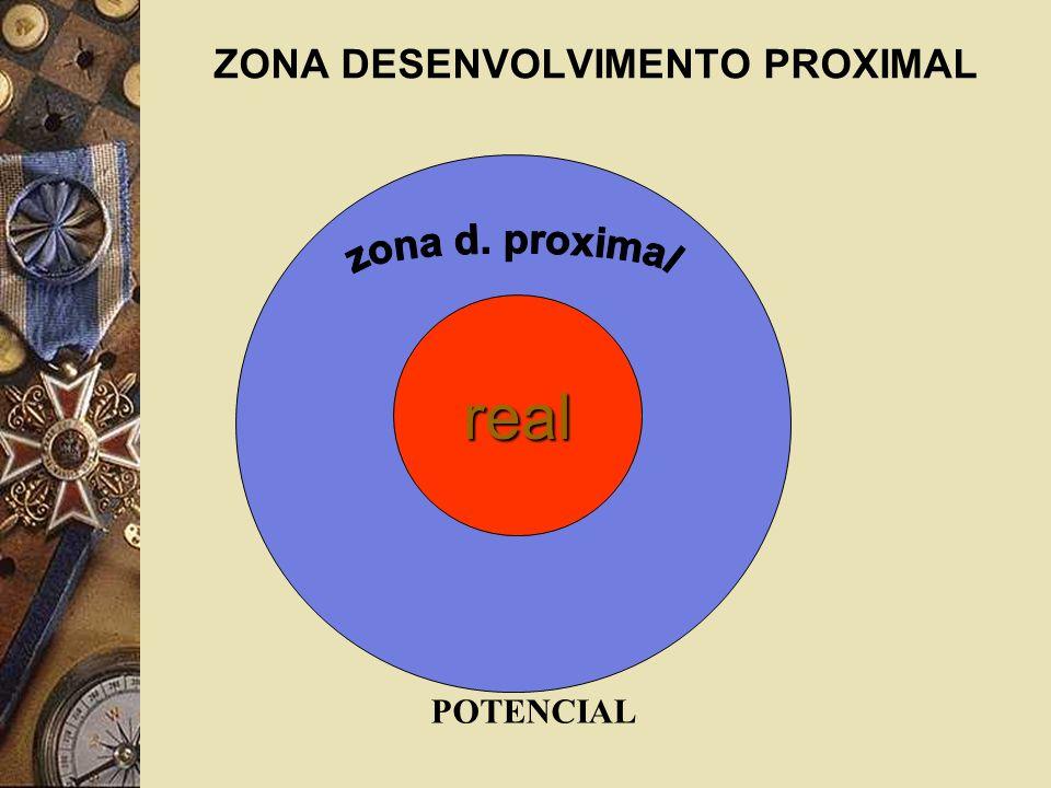 ZONA DESENVOLVIMENTO PROXIMAL