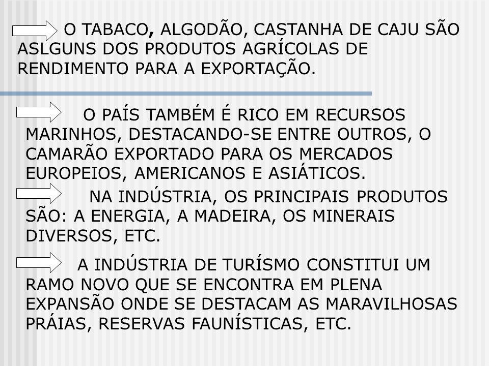 O TABACO, ALGODÃO, CASTANHA DE CAJU SÃO ASLGUNS DOS PRODUTOS AGRÍCOLAS DE RENDIMENTO PARA A EXPORTAÇÃO.