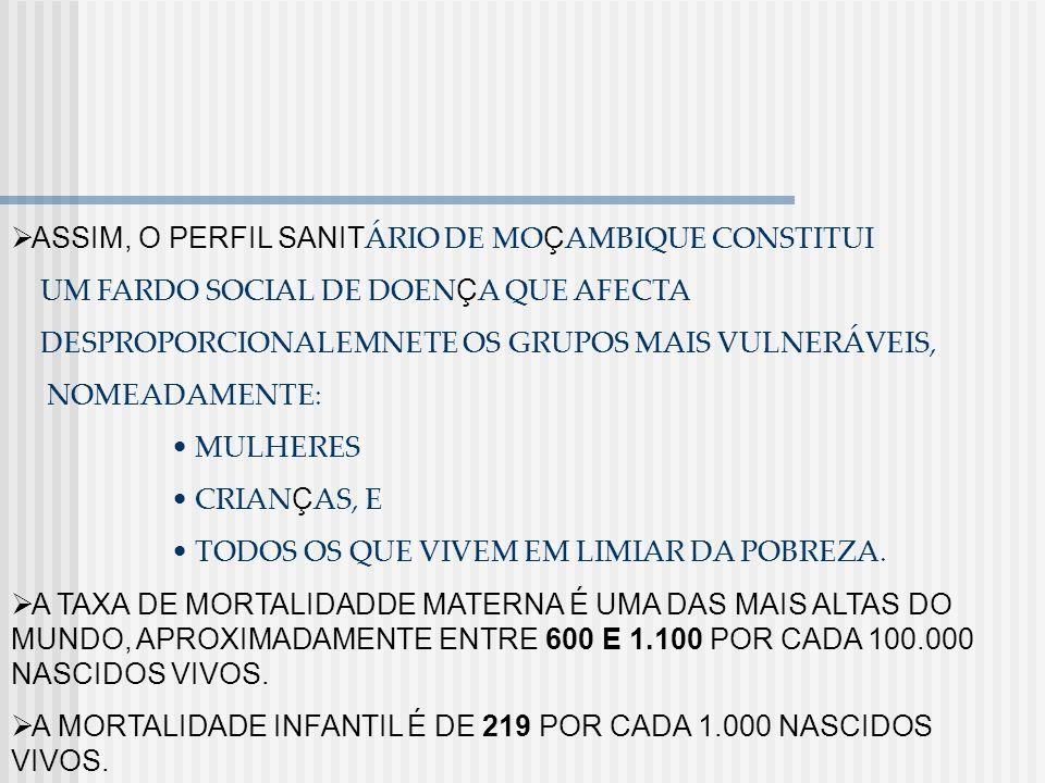 ASSIM, O PERFIL SANITÁRIO DE MOÇAMBIQUE CONSTITUI