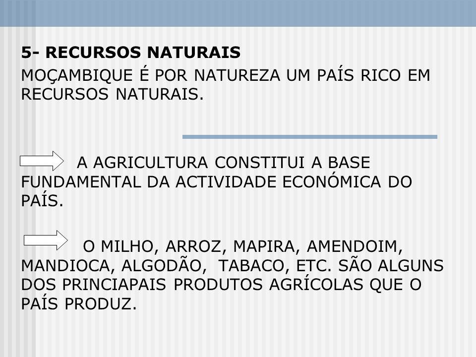 5- RECURSOS NATURAIS MOÇAMBIQUE É POR NATUREZA UM PAÍS RICO EM RECURSOS NATURAIS.