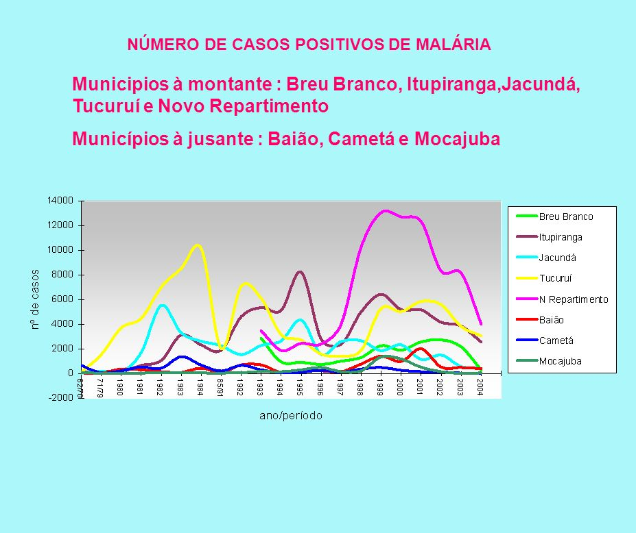 NÚMERO DE CASOS POSITIVOS DE MALÁRIA