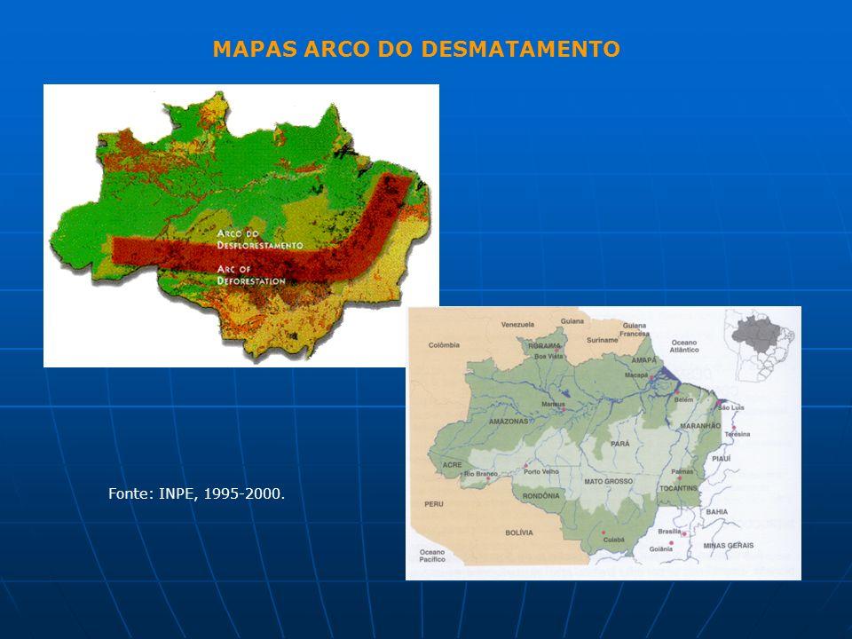 MAPAS ARCO DO DESMATAMENTO