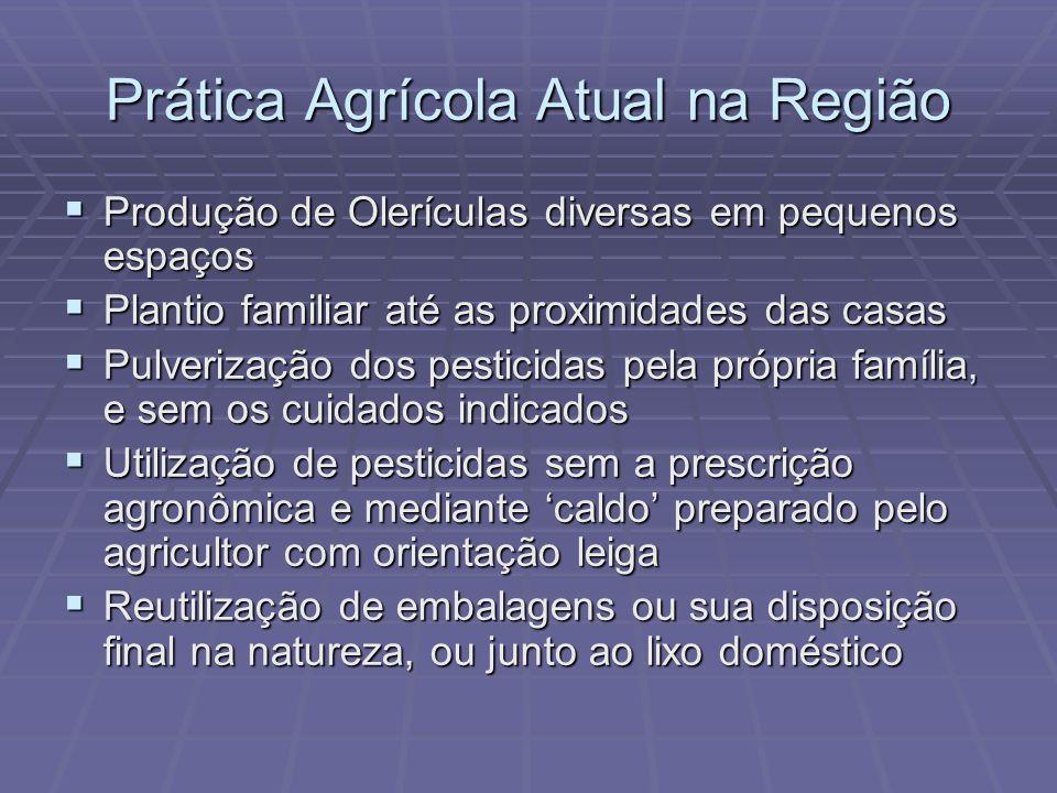 Prática Agrícola Atual na Região