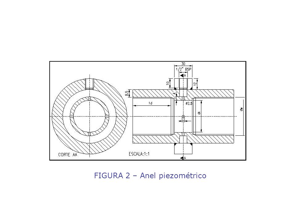 FIGURA 2 – Anel piezométrico