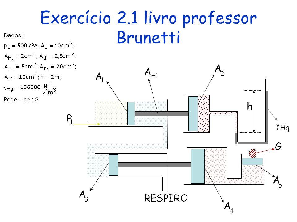 Exercício 2.1 livro professor Brunetti
