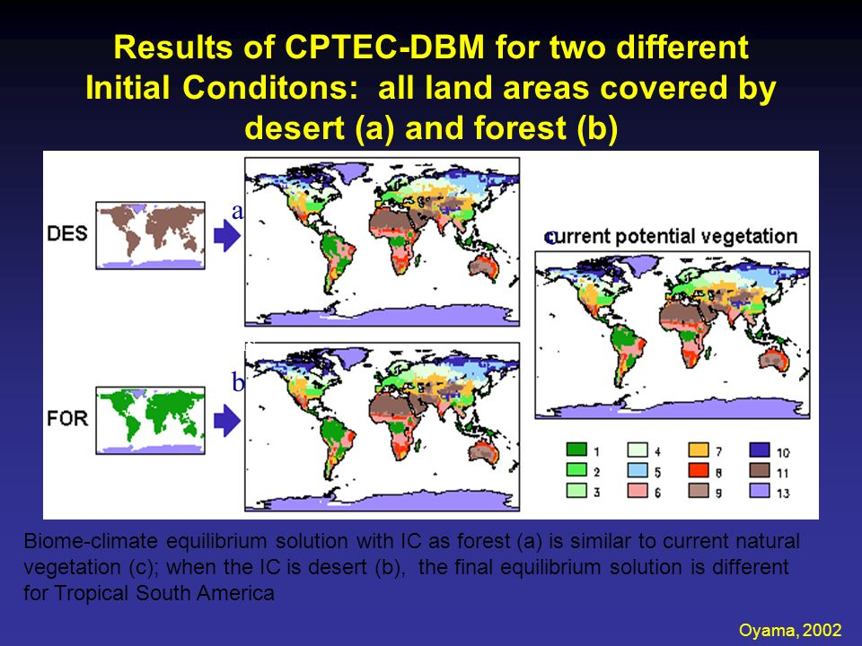 Results of CPTEC-DBM for two different Initial Conditons: all land areas covered by desert (a) and forest (b)