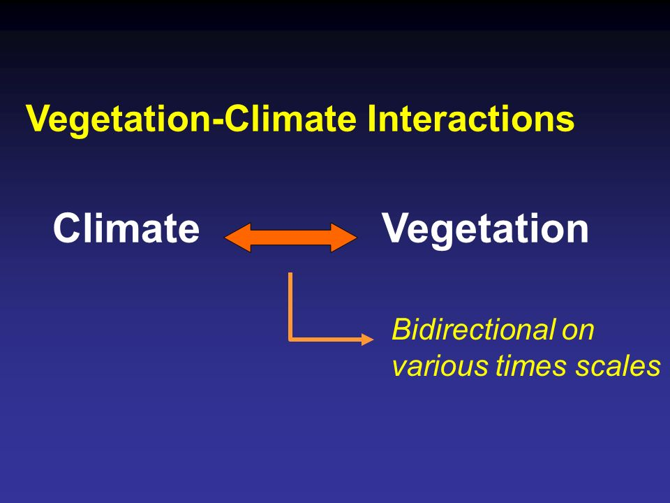 Vegetation-Climate Interactions