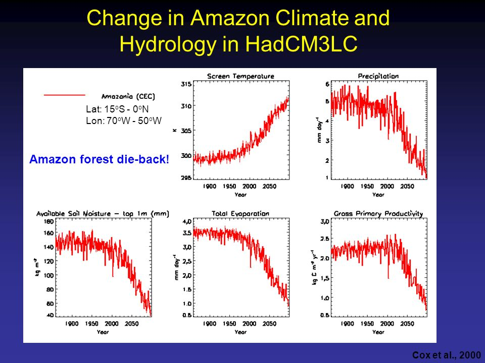Change in Amazon Climate and Hydrology in HadCM3LC
