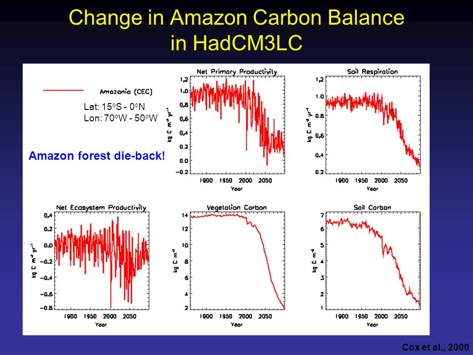 Change in Amazon Carbon Balance in HadCM3LC