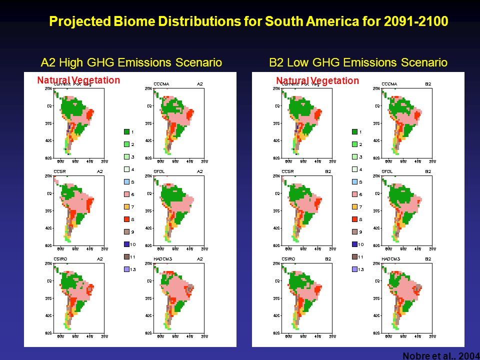 Projected Biome Distributions for South America for 2091-2100