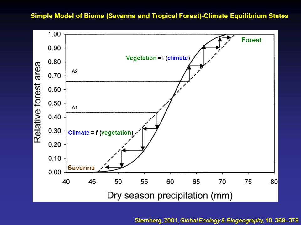 Simple Model of Biome (Savanna and Tropical Forest)-Climate Equilibrium States
