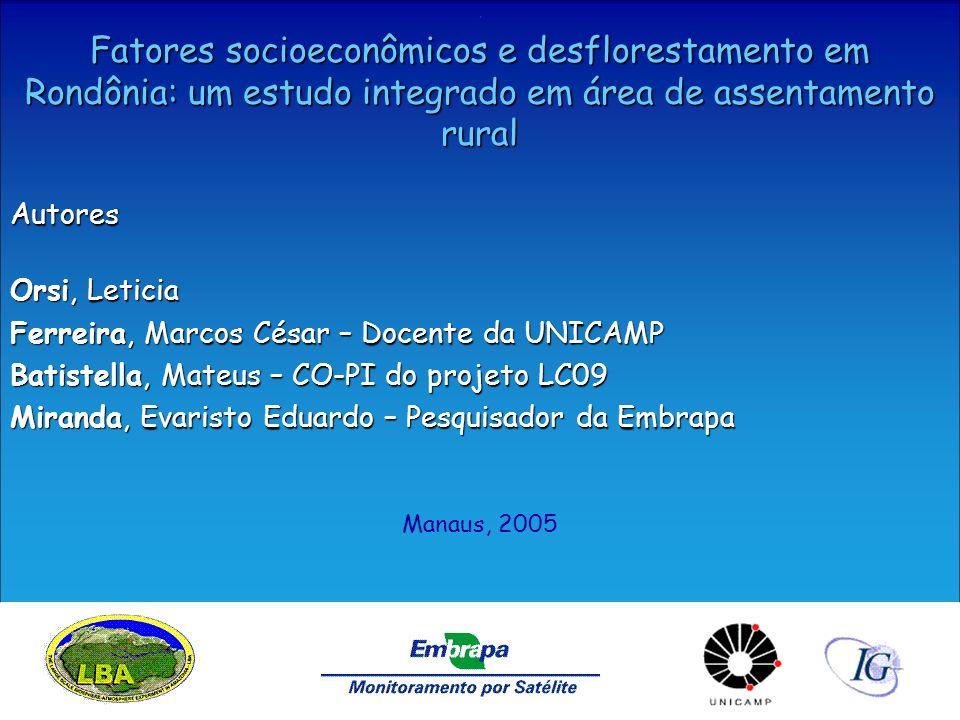 .Fatores socioeconômicos e desflorestamento em Rondônia: um estudo integrado em área de assentamento rural.