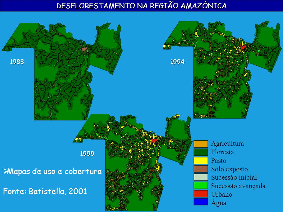 DESFLORESTAMENTO NA REGIÃO AMAZÔNICA