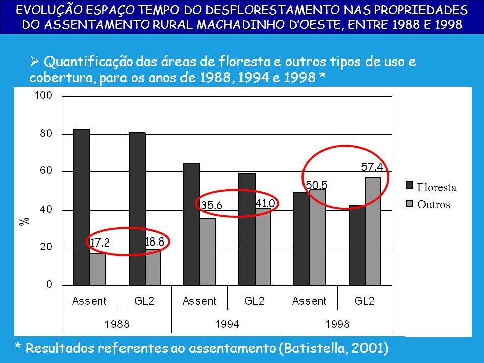 * Resultados referentes ao assentamento (Batistella, 2001)