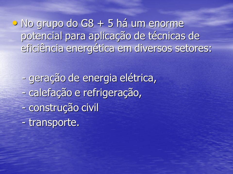 No grupo do G8 + 5 há um enorme potencial para aplicação de técnicas de eficiência energética em diversos setores: