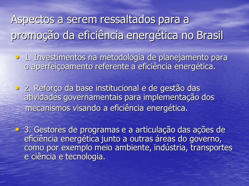 Aspectos a serem ressaltados para a promoção da eficiência energética no Brasil