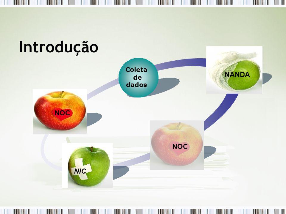 Introdução NANDA NANDA NOC NOC N O NOC C NIC NIC Coleta de dados