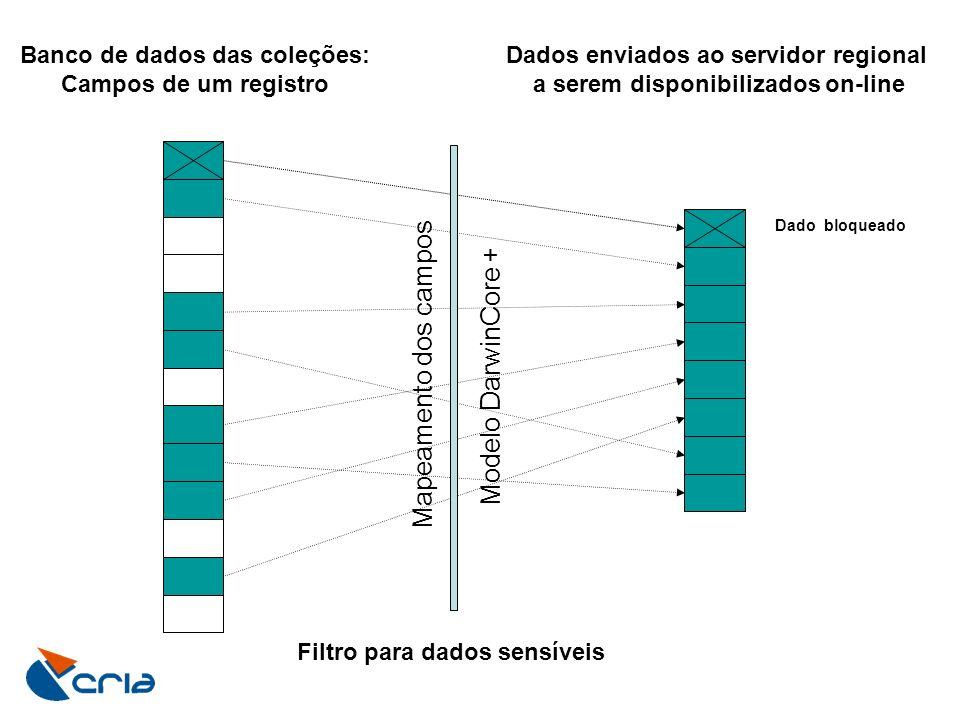 Mapeamento dos campos Modelo DarwinCore + Banco de dados das coleções: