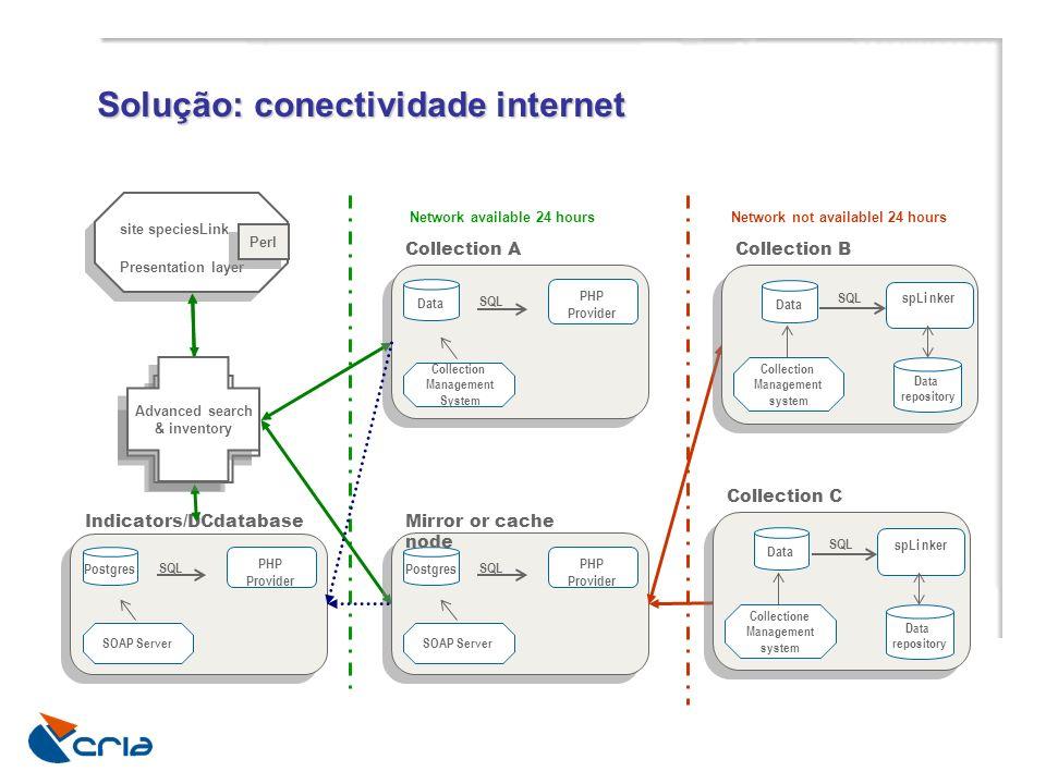 Solução: conectividade internet