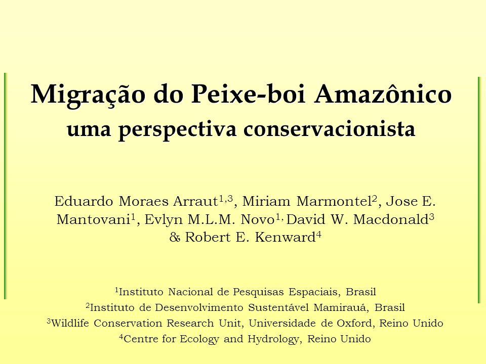 Migração do Peixe-boi Amazônico uma perspectiva conservacionista