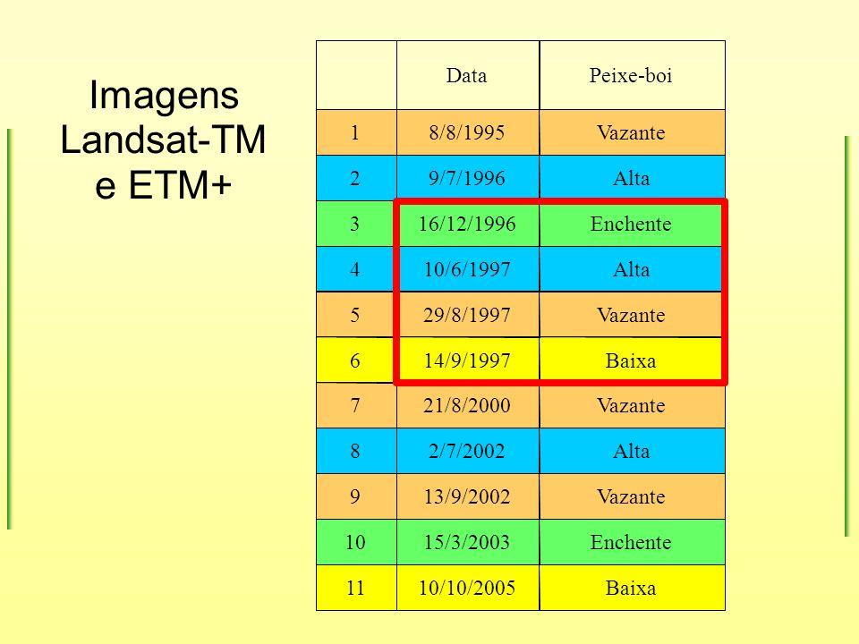 Imagens Landsat-TM e ETM+