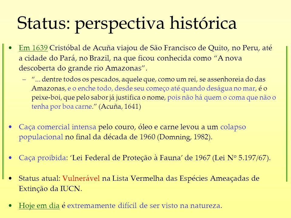 Status: perspectiva histórica
