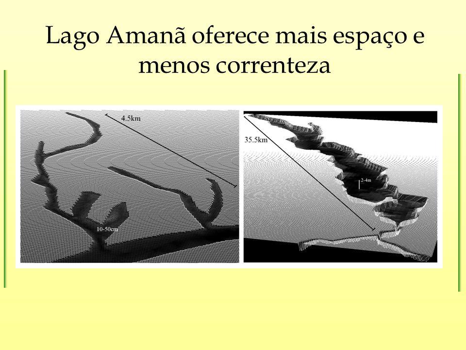 Lago Amanã oferece mais espaço e menos correnteza