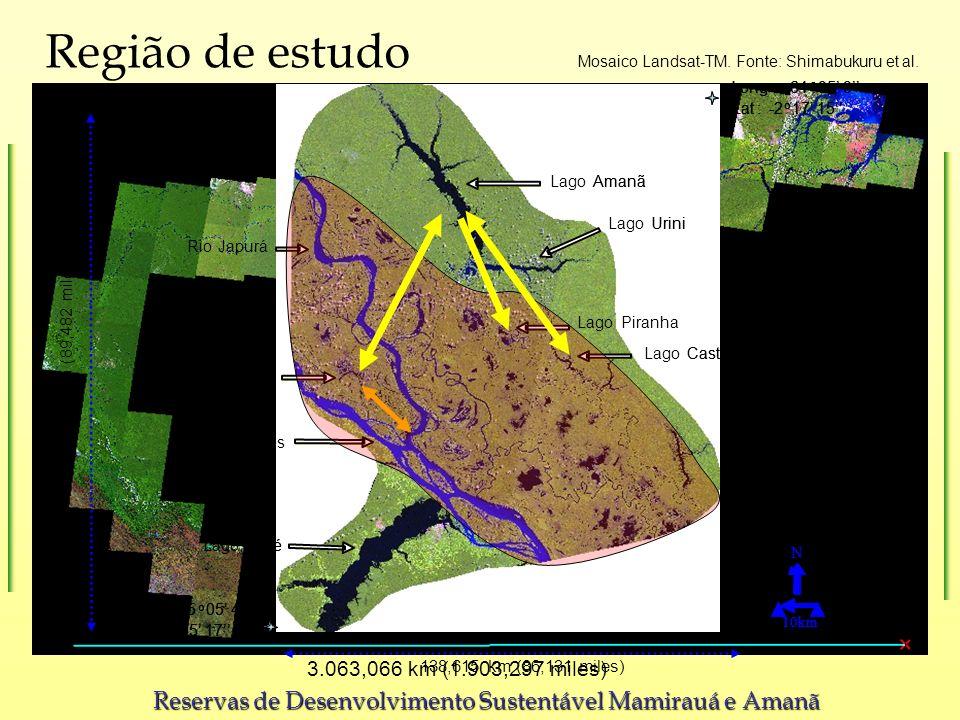 Região de estudo 3.063,066 km (1.903,297 miles) Mosaico Landsat-TM. Fonte: Shimabukuru et al. Lake.