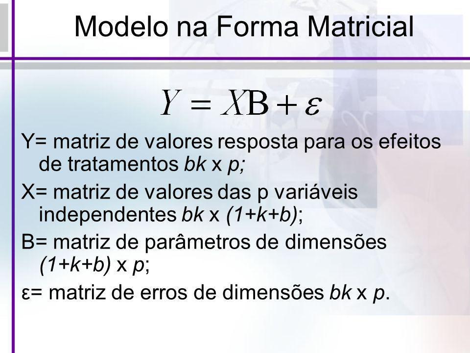 Modelo na Forma Matricial