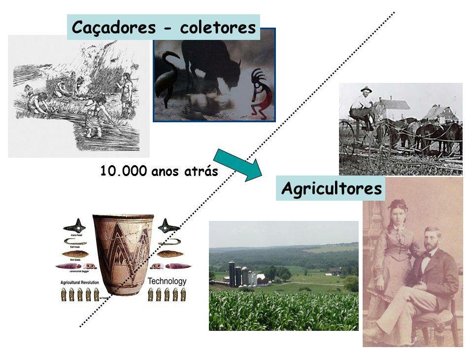 Caçadores - coletores 10.000 anos atrás Agricultores