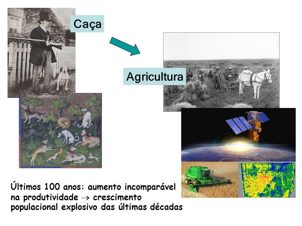 Caça Agricultura.