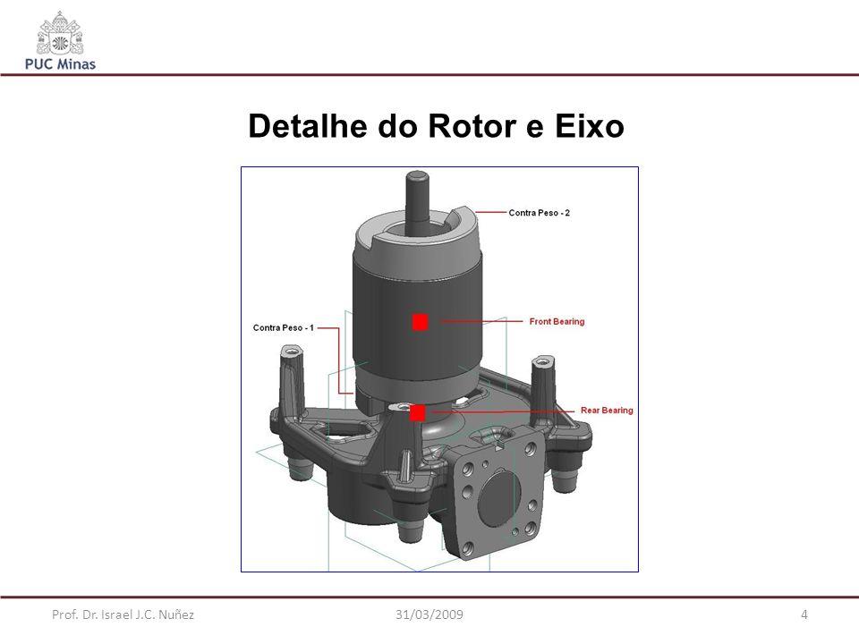 Detalhe do Rotor e Eixo Prof. Dr. Israel J.C. Nuñez 31/03/2009