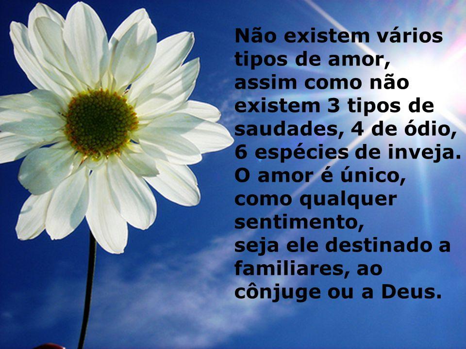 Não existem vários tipos de amor, assim como não existem 3 tipos de saudades, 4 de ódio, 6 espécies de inveja.