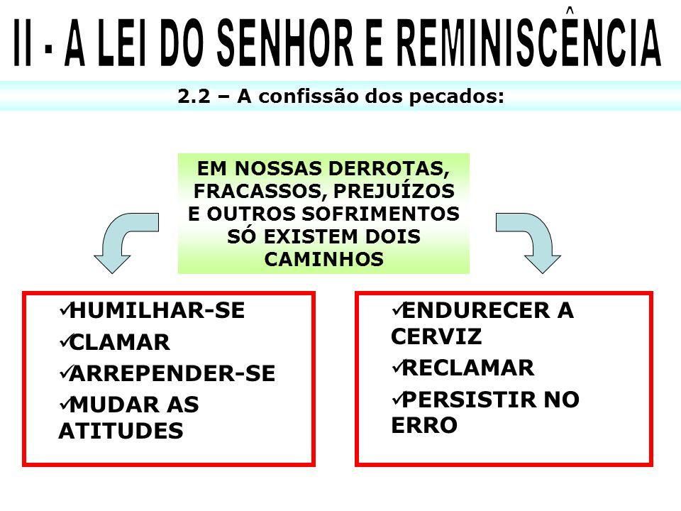 II - A LEI DO SENHOR E REMINISCÊNCIA 2.2 – A confissão dos pecados: