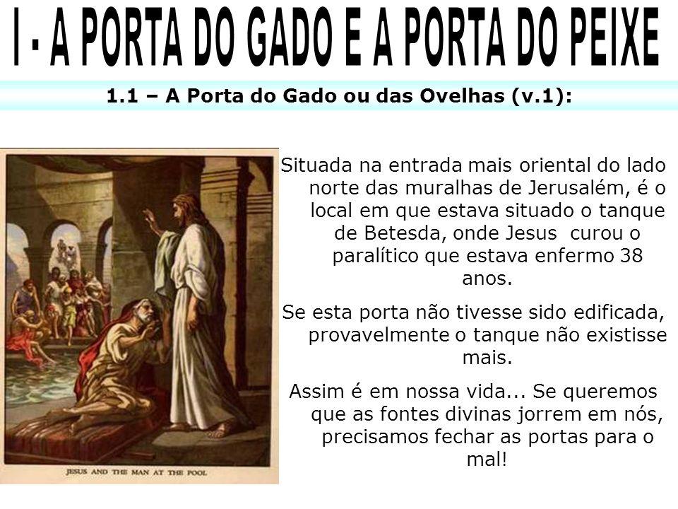 I - A PORTA DO GADO E A PORTA DO PEIXE