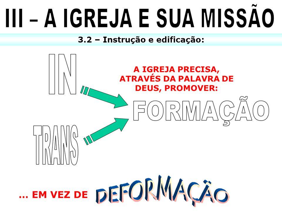 III – A IGREJA E SUA MISSÃO 3.2 – Instrução e edificação: