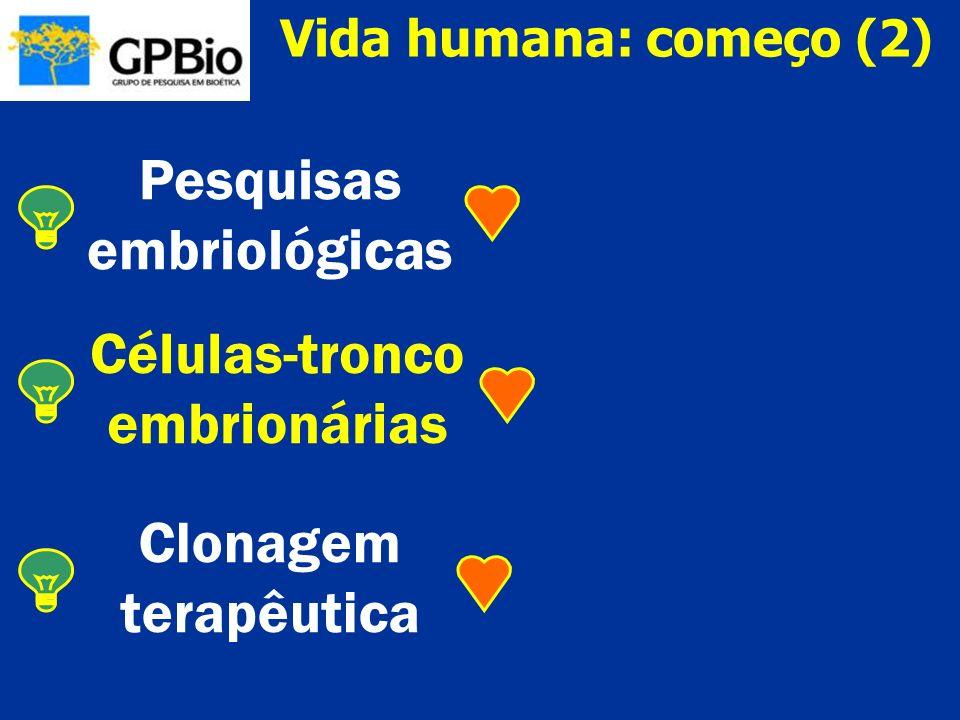 Pesquisas embriológicas Células-tronco embrionárias Clonagem
