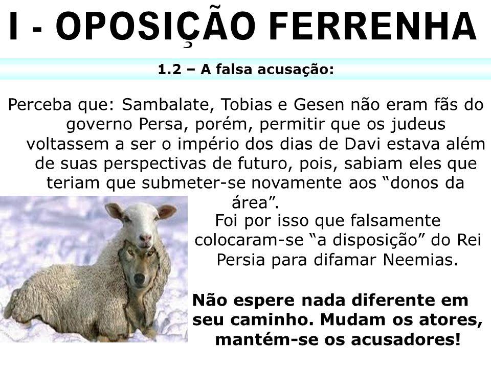 I - OPOSIÇÃO FERRENHA 1.2 – A falsa acusação:
