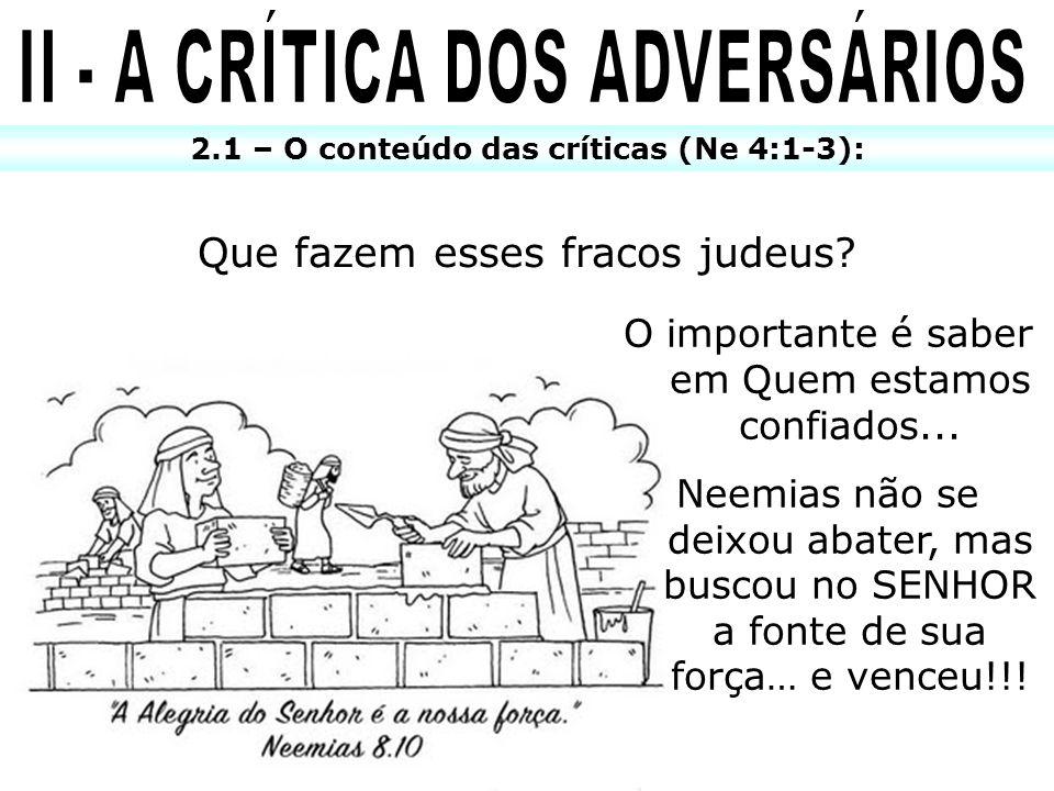 II - A CRÍTICA DOS ADVERSÁRIOS