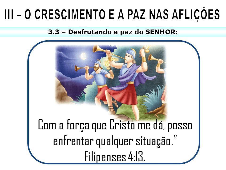 III – O CRESCIMENTO E A PAZ NAS AFLIÇÕES