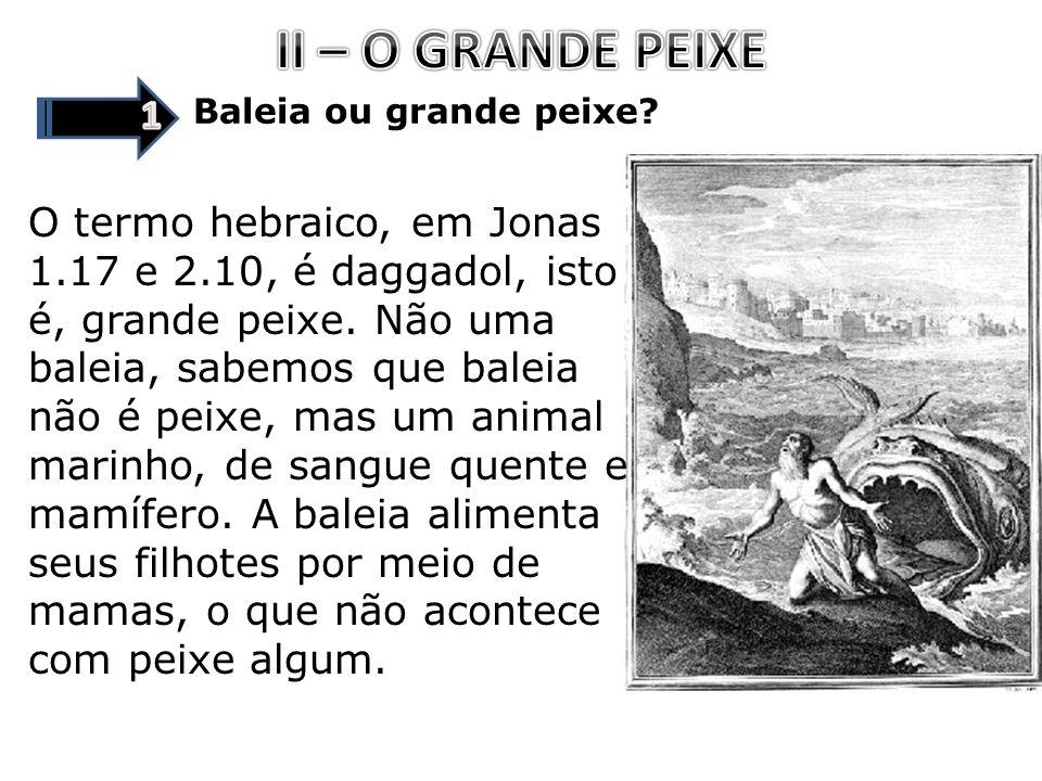 II – O GRANDE PEIXE 1. Baleia ou grande peixe